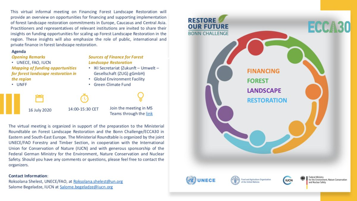 The virtual informal meeting on Financing Forest Landscape Restoration, next 16 July at 14:00-15:30 CET, will provide an overview on opportunities for financing and supporting implementation of forest landscape restoration in Europe, Caucasus and Central Asia.