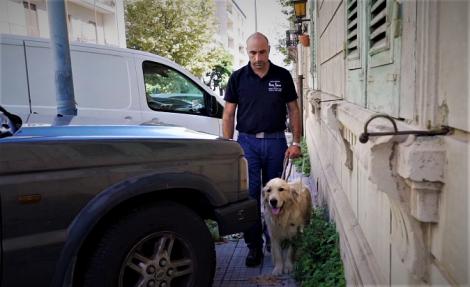 Cani guida per i non vedenti all'istituto Ardizzone Gioeni di Catania (VIDEO) - https://t.co/UkttxS5RIm #blogsicilianotizie