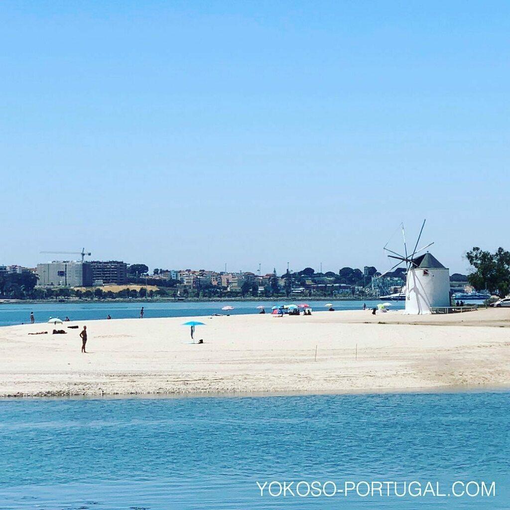 test ツイッターメディア - リスボンからテージョ川を渡ったバレイロにある、水車のかわいいビーチ。#リスボン #ポルトガル #ビーチ https://t.co/2nEkLqGomf