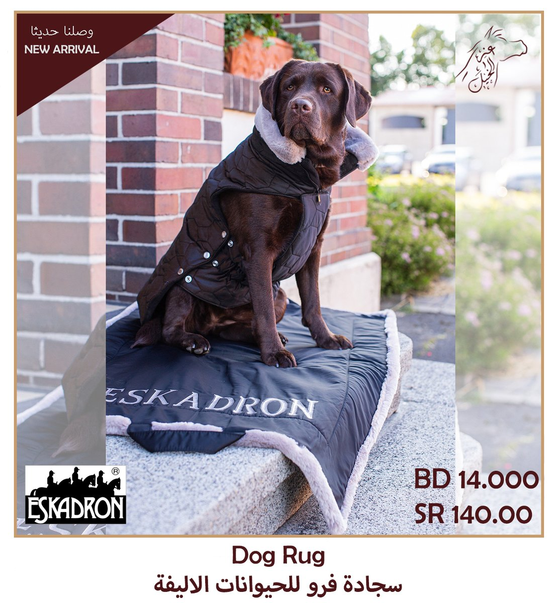 Eskadron Dug Rug is now available at our branch and on http://www.horsepride.compic.twitter.com/W52Sf1mTRE