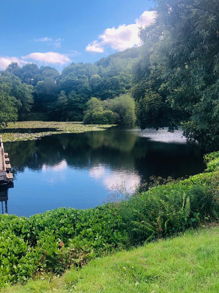 It may be a little cloudy again today but when the sun comes out it's glorious.  Open from 10am  #arayofsunshine #perfectsocialdistancing #90acres #familytime #dogfriendly #lakes #wetlands #openspace #waterfalls  @visitdartmoor @visitdevon @devonstopattractionspic.twitter.com/0YknU1XGqt
