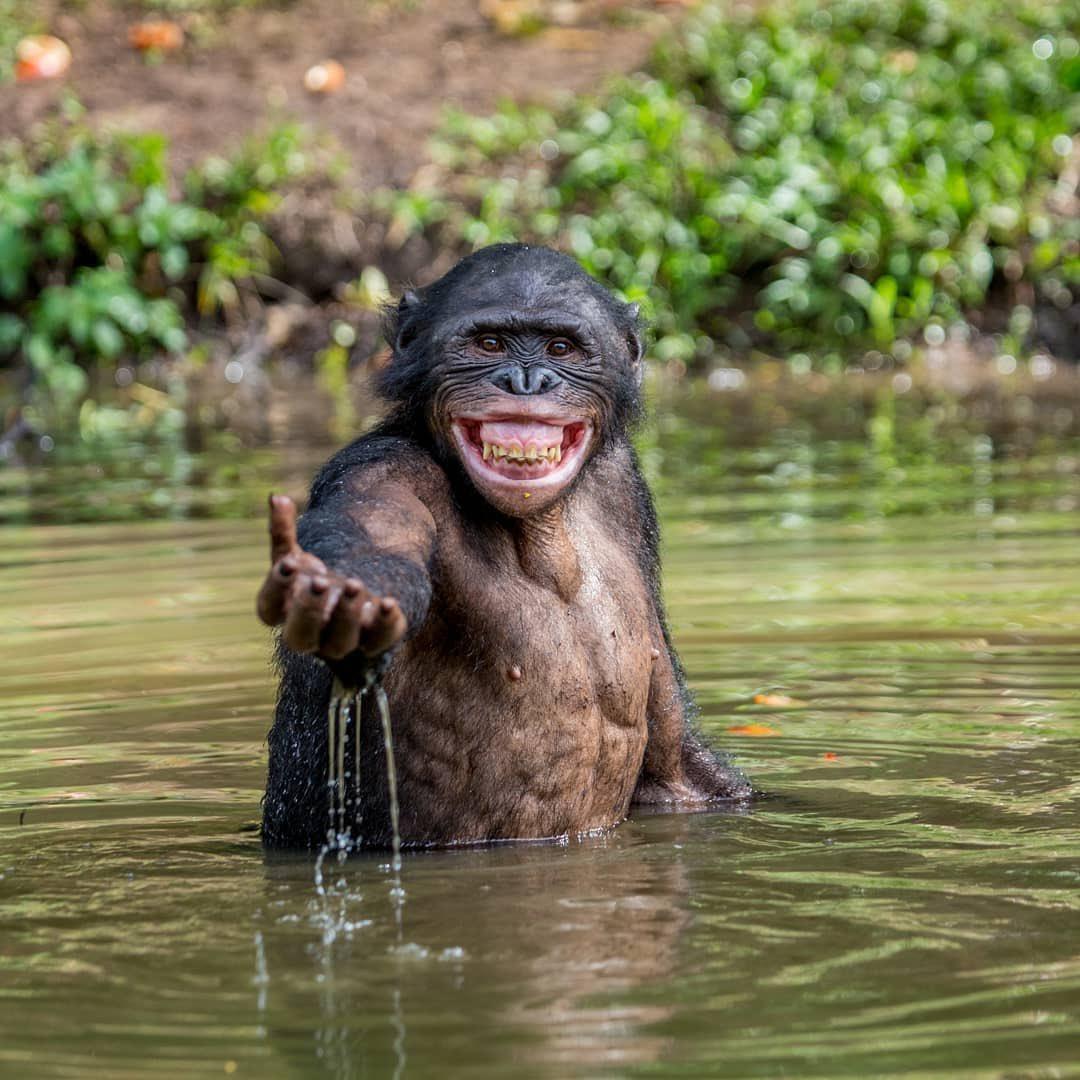 حطي أيدك بأيدي ونسافر عبلاد جديدي   تتضلي الضحكة تعيدي وعجبينك بكتب أسميpic.twitter.com/fTrcwlBueT