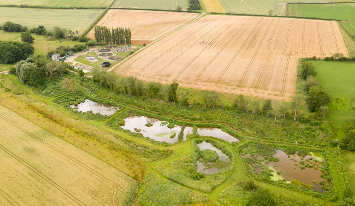 Great day droning for the @N_Rivers_Trust. Here they have created a wetland that helps prevent thousands of kg of excess nutrients from sewage works getting into our rivers, also locking up carbon and providing a home for wildlife. This place was buzzing with life.