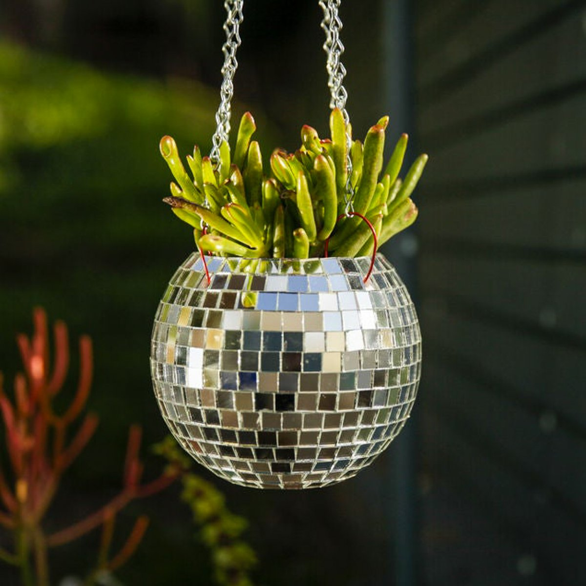 Have a dance party with your plants! Learn how to make an awesome disco ball planter with @audreyObscura   https://t.co/zzAXJvjxTp https://t.co/xCkTuunjZD