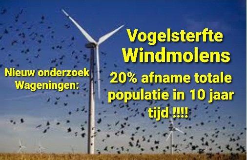 #windmolens #vogelsterfte Het is nog veel erger dan eerder bekend! Nieuw onderzoek van de Wageninger Universiteit toont aan dat er veel meer vogels wreed sterven door windmolenwieken dan gedacht. Een gevaar voor onze vaak al bedreigde vogelsoorten...Dan hoor je't Linksvolk niet.. https://t.co/PYlLEjFFwy