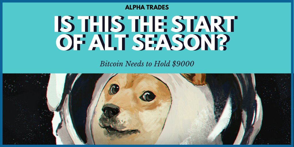 Alt Season? Not so fast! Bitcoin Needs to Hold $9000 4 trade setups.  Such wow.  Check out our crypto newsletter -- Not investment advice, no crystal ball. https://buff.ly/2DosoJE   #cryptotrading $BTC #crypto #Doge #altseason2020 #DeFipic.twitter.com/Guugc66J3e