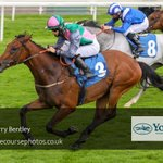 @HarryBentley_ and Orbaan take the final race at @yorkracecourse at our first 'BCD' meeting for @omeararacing.   Keep your eyes peeled for the photos going live on the website this evening!  Today's photos shot by Jeremy Phillips.