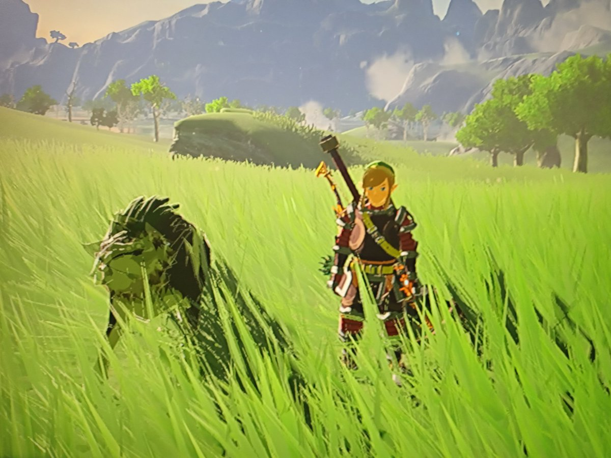#thursdaymorning.  Be Playful, Have a Fun Day #BreathoftheWild #gaming #fun