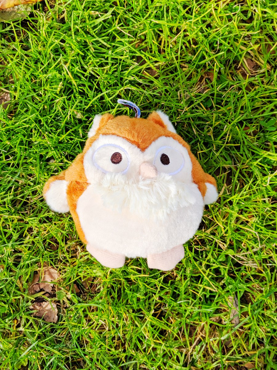 Playtime with this Cuddly Owl will be a hoot and a half!  Made with a double layer exterior and double stitched edges, this toy works even for the toughest chewers!  Get yours today: https://bit.ly/2VHPP6O   #thecuddlyboutique #thecuddlycottage #cuddly #dogtoy #dogs #dogpic.twitter.com/TTdaioQ1D4