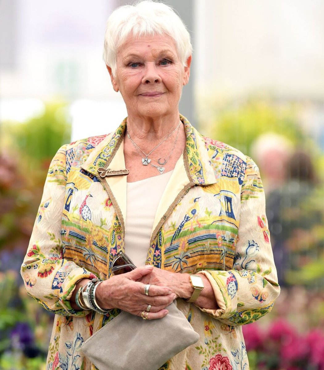 Judi Dench as objects in our collection — a thread