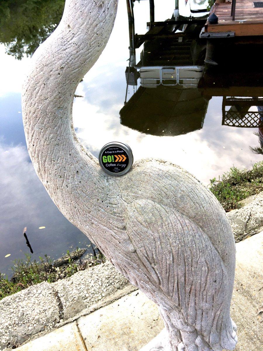 """All work and no play makes Jack a dull boy.""😎  Get in some #SummerFun!🚤🛶🛥  Live more...Live better...#EatGO!☕️  #CoffeeYouEat #Boating  #CoffeeChew #Fishing #Watersports #Outdoors #CBDCoffee #Coronavirus #Coffee #Health #Dip #Rebel #GoCoffeeEnergy https://t.co/iPfBxKfJGE"