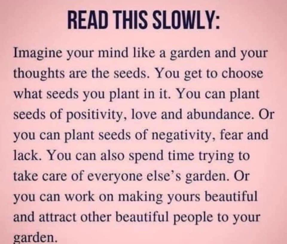 What type of seeds do you plant in your garden? 🌱🌸🌼🌻