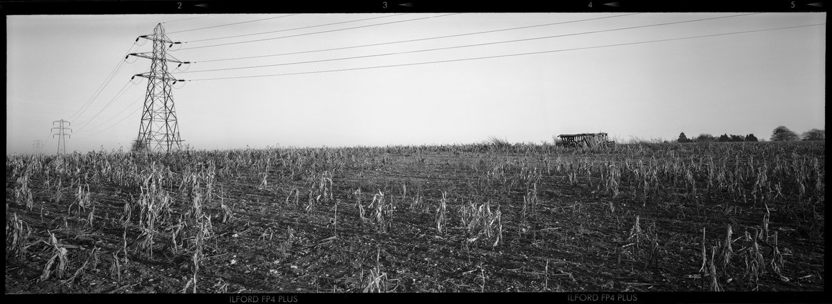 Lets try this one... 6x17 Ilford FP4 PLUS negative scan of a boring Suffolk landscape. More crops and Pylons... . . . #blackandwhitephoto #blackandwhitephotography #bnwphotography #bnwphoto #bnwlife #bnw_captures #bnw_mood #bnw_daily #bnw_planet #suffolk #pylonspic.twitter.com/ebgu9fmT2W