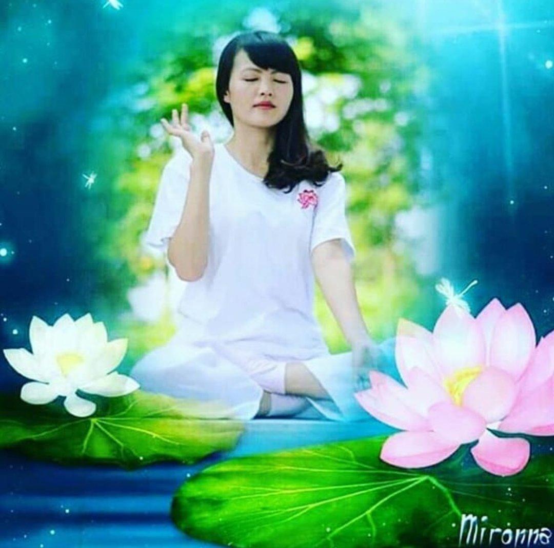 Adquira paz interior através da meditação do Falun Dafa. Acesse http://Falundafa.org e leia os livros e aprenda os exercícios gratuitamente. #falundafa #espiritual #falungong #qigong #imunidade #saude #paz #pazinterior #nostress #relax #exercicios #meditacao #yoga #taichipic.twitter.com/9TYXER9sN7