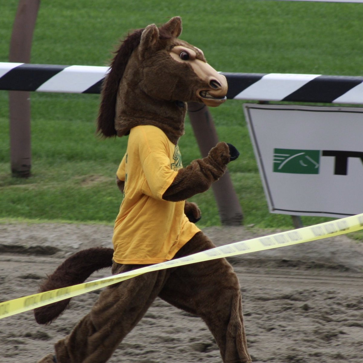 Hey @TheNYRA, when things get better can y'all bring back the mascot races? It's been way too long since I've flexed my hooves 😤 🐎 #TBT #Thoroughbred (circa 2009) https://t.co/YdCGkHTWqn