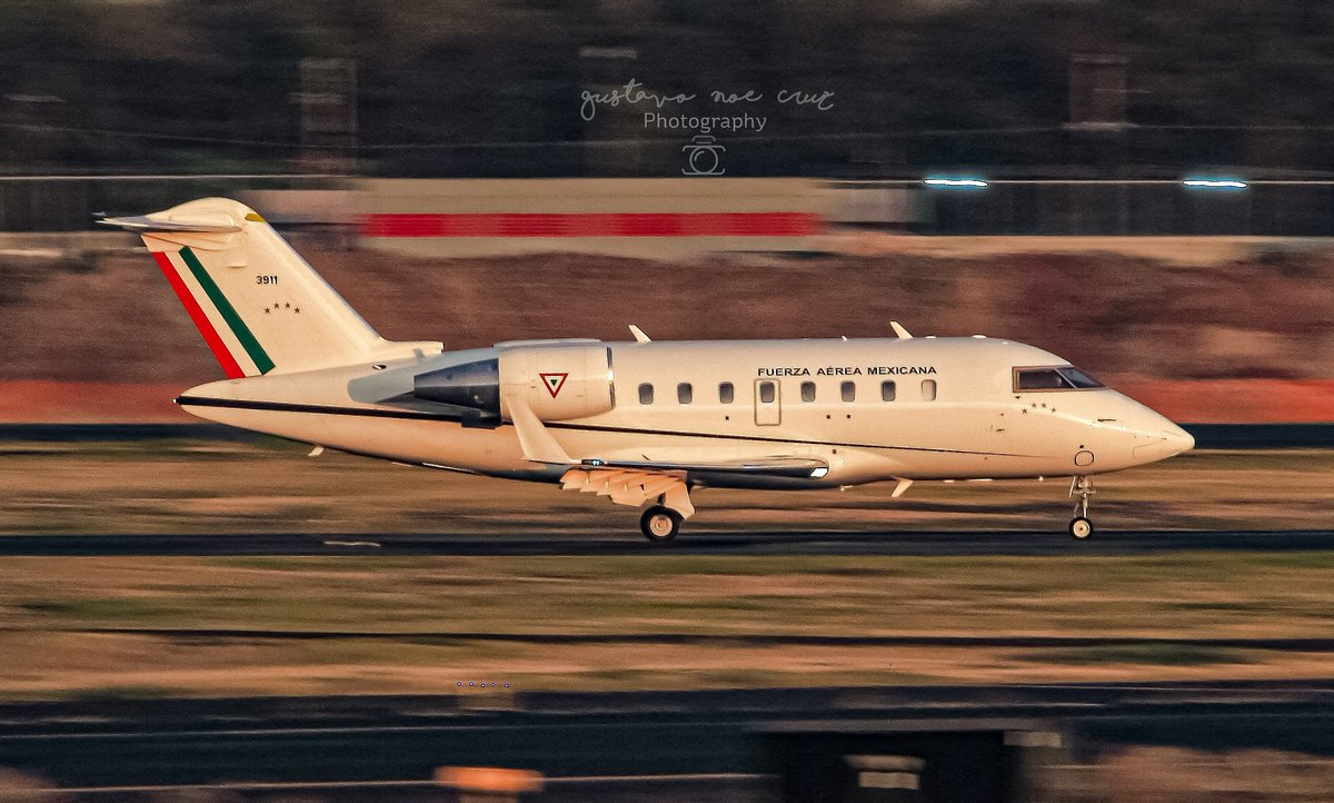 Fuerza Aerea Mexicana Bombardier CL605 Challenger FAM-3911 #fam #fuerzaaereamexicana #bombardier #cl605 #aviation #aviationphotography #aviationlife #aviationgeeks #aviationworld #planespotting #spotting #spottingplanes #panning #megaplane #megaaviation #mmmx #aicm https://t.co/TlmOLaqw1v