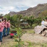 Image for the Tweet beginning: MasterChef Gran Canaria tuvo un