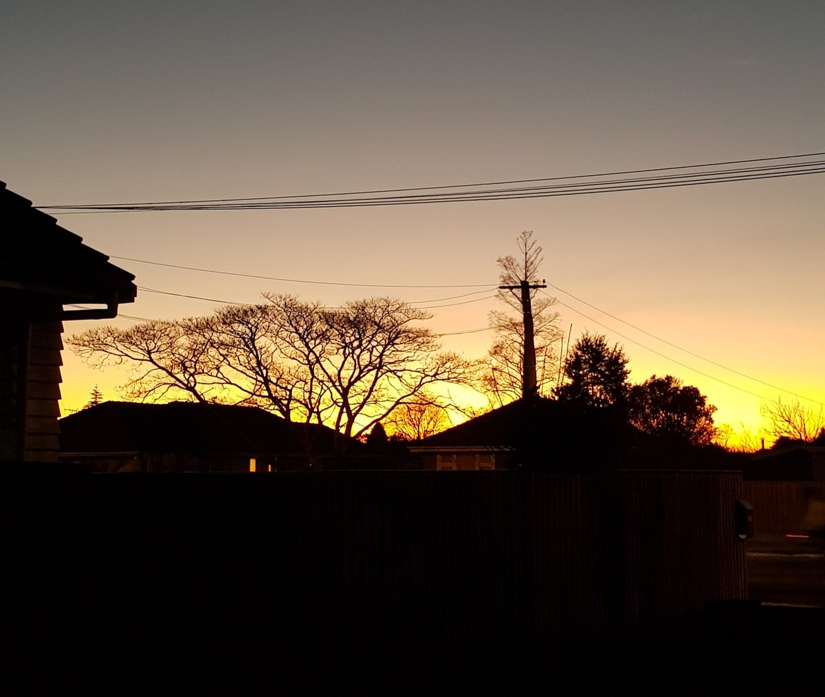 When you try to make your sunrise photo in Christchurch look like the Serengetti by adding a tree. Cracker of a sunrise