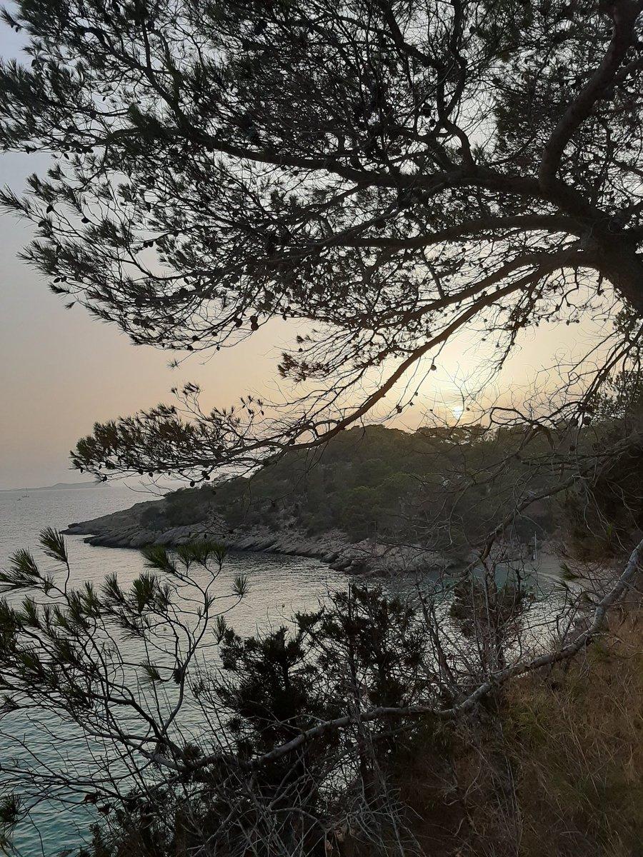 Morriña... este verano solo te recordaré #ibiza #calas #naturalezapic.twitter.com/8RYS82t2Sq