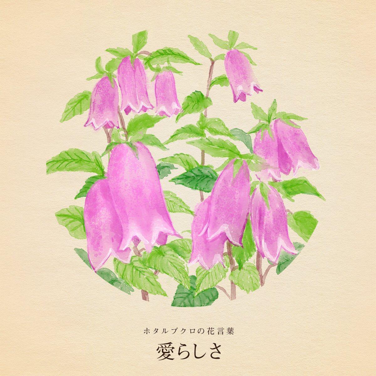きょう7月10日は四万六千日ウルトラマンの日納豆の日ブナピーの日指笛の日潤滑油の日植物油の日ニコラ・テスラの誕生日誕生花はホタルブクロ花言葉「愛らしさ」
