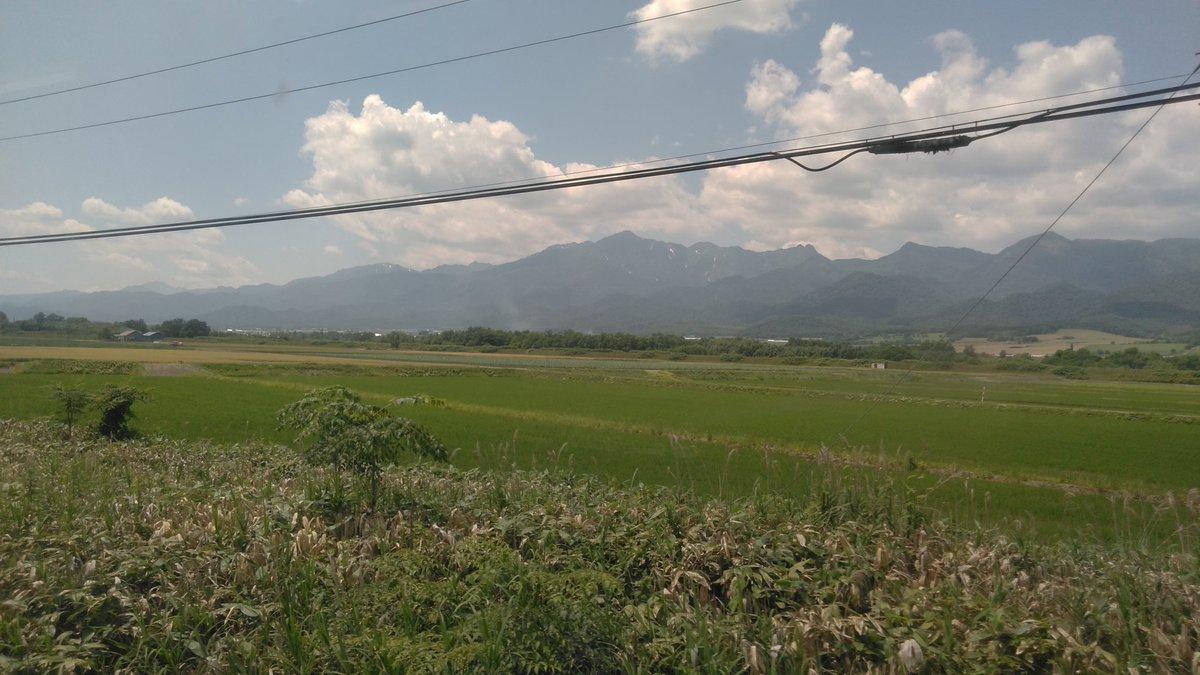 takekotempoku photo
