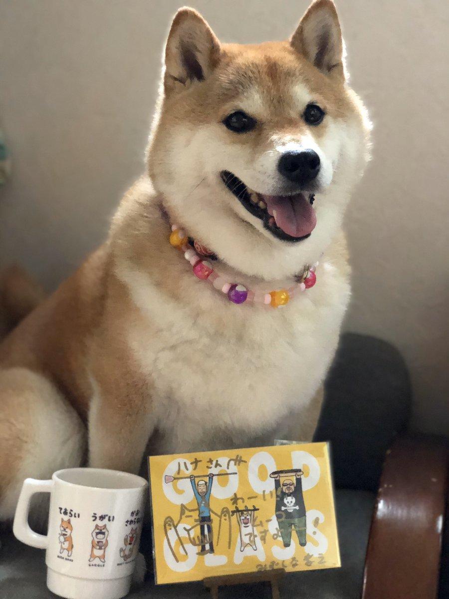 イブニングに写真載ったよ記念に、ムーコちゃんのかわいいマグ買ったよー😋みずしな孝之さんのサインも貰っちゃったんだからー😊