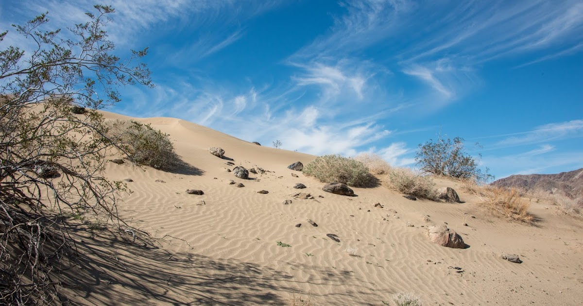 Hike heads to sand dunes in Joshua Tree National Park #joshuatreenationalpark #socal #optoutside https://hikeswithtykes.blogspot.com/2017/09/hike-heads-to-sand-dunes-in-joshua-tree.html…pic.twitter.com/wsDqAJ3af5