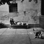 Image for the Tweet beginning: Josef Koudelka - L'ospedale psichiatrico