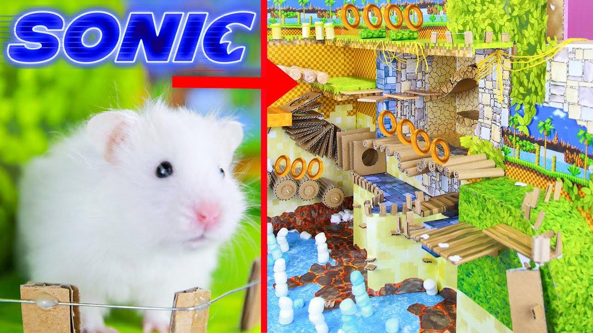 Nintendo Sonic Maze Game For Cute Hamster https://t.co/mjFCgvfC10 #likeforlike #follobackforfolloback #pets #animal #cute #cardboard #challenge #adorable #hamster #animallovers #ToyStory #SonicTheHedgehog #SONIC #DIYtoy #handmade #summertime https://t.co/SAhAtARrGL