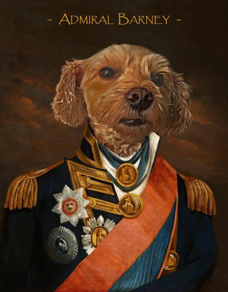 I present Barney in the Admiral Horatio Nelson attire. @RoyalCatsDogs @TheGoodDogGuide #petsbiz #dog #dogs #pets #instadog #instadogs #ilovemydog #cat #cats_of_instagram #catoftheday #london #prettycat #gift #dogartist #therapydog #NHSthankyou #NHSheroes #stayhomesavelives #NHSpic.twitter.com/I9HVpkK9KG