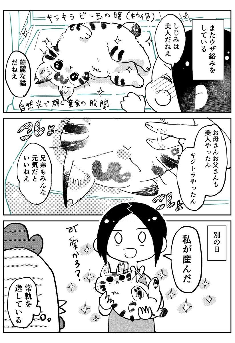 3本足のしじみちゃん88