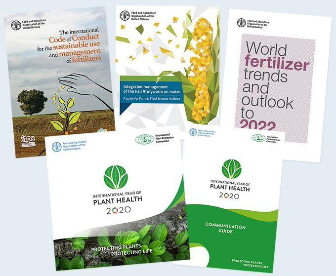 Protecting plant health can help end hunger, reduce poverty, protect the environment and boost economic development. 🌱🌱  Check out our key publications on #PlantHealth 👉 https://t.co/kuxDSMe4e8  #IYPH2020 https://t.co/u2ZTlLlzDL