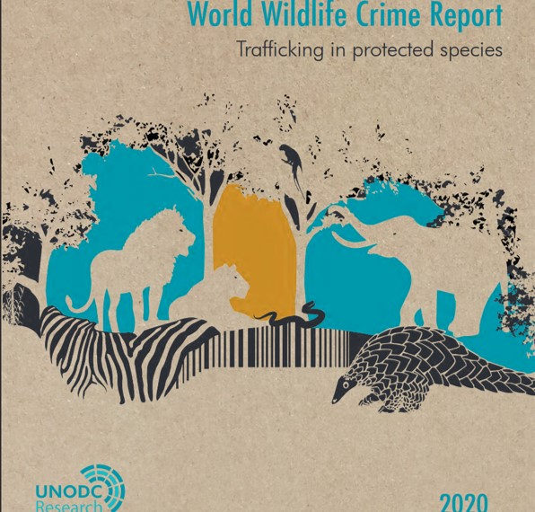 """Conspicous absence of #marine species on new 2020 @UNODCWorld Wildlife Crime report! To quote 2016 edition: In common parlance, the word """"wildlife"""" does not include fish, but this terrestrial bias has little rational basis. #WorldWildlifeDay2019 #IUUFishing #EndWildlifeCrime"""