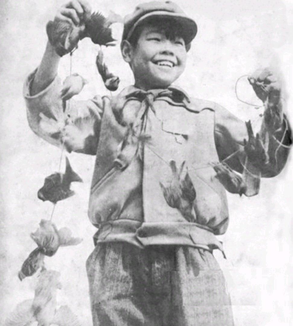 Hubo una masacre total de estas aves, fueron envenenadas, rompían los nidos, las mataban con resorteras, esto acabó con las poblaciones de gorriones en China en menos de 4 años.pic.twitter.com/v7nWSYfvgN