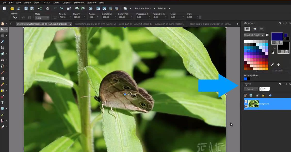 Want to learn about #photoediting with #layers? Find out how in this @CorelDiscovery #tutorial! Working with Layers Part 1: Introduction to Layers in PaintShop Pro