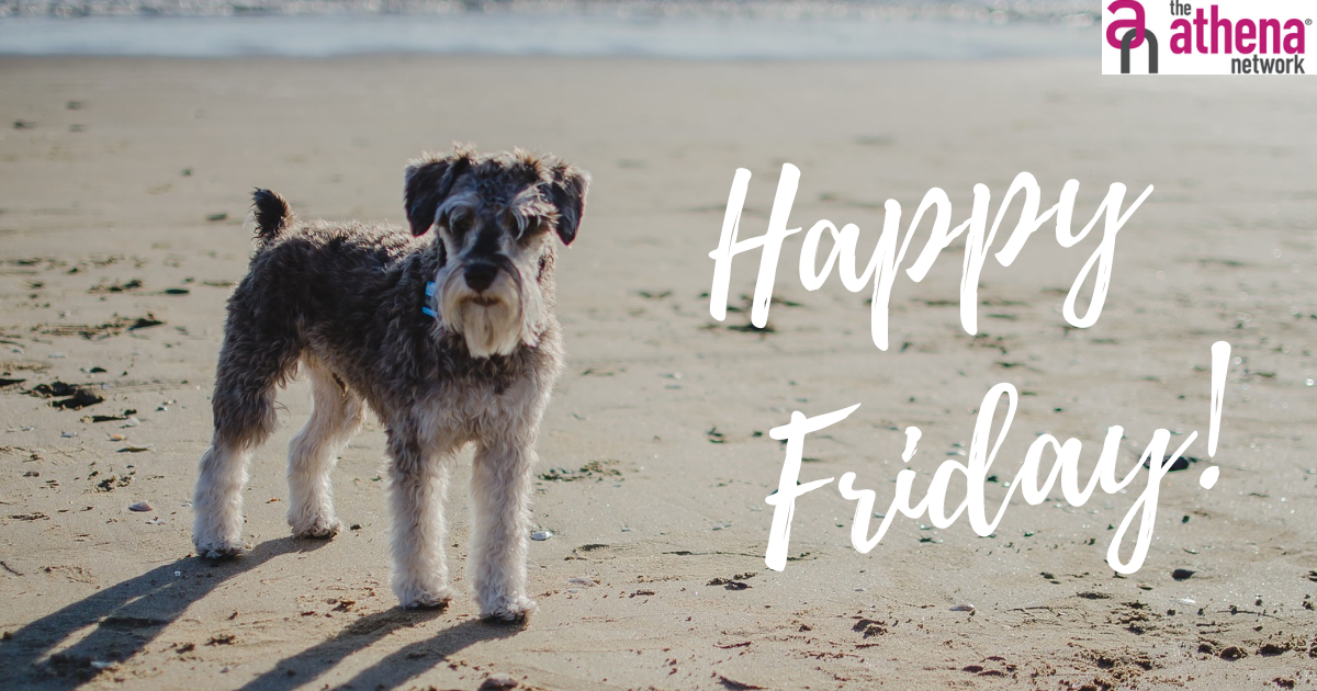 What have you got planned for the weekend?  Have you booked your place at one of our meetings for July yet? If not, now would be a great time to do so.  #FridayFunday #Weekend #FridayFeeling #Enjoy #Relax #Share #womeninbusiness #athenanetwork #femaleentrepreneur #women https://t.co/q7PWpAeou4