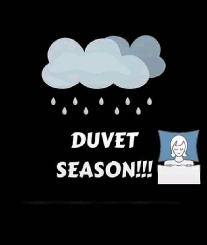 #AbujaTwitterCommunity #Abuja How do y'all stay warm in this cold/rainy season?    Give your body and room that warmth and fresh feel. Let DUVETS do the work sometimes   Duvet sets are going for 15,000, while duvets alone is 11,000. Kindly RT and patronize  pic.twitter.com/4V6wDRwfZX