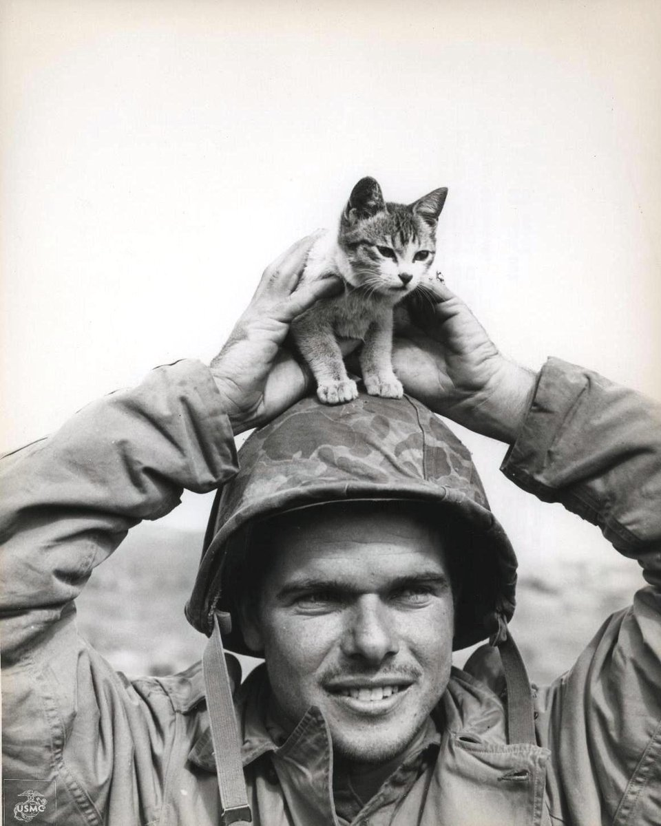 Corporal Edward Burckhardt sports a kitten that he found at the base of Suribachi Yama on the battlefield at Iwo Jima when he came ashore with the 5th Marine Division in 1945.  #NationalKittenDay #FridayFun <br>http://pic.twitter.com/KdbAYCsZow