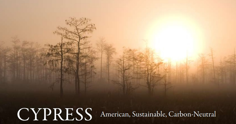 Cypress_Info photo