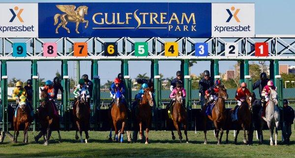 . GULFSTREAM PARK,FRIDAY 07/10/2020 1)  10-11-7-2 2)  7-3-4-6 3)  5-3-10-1 4)  8-3-2-4 5)  9-7-8-6 6)  3-4-6-7 7)  9-4-1-7 8)  3-10-2-7 9)  12-8-4-11 #GulfstreamPark #Gulfstream_Park #Gulfstreampark_USA #Bestbet #races #DatosHipicos #Hipismo #Hipica #ByArrayago #Arrayago #RAAC https://t.co/7nfqpPGlBw