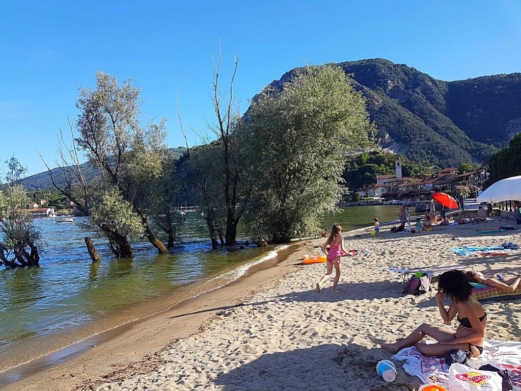 Sapete dire in quale città del Lago Maggiore è questa spiaggia?   #Lagomaggiore #lakemaggiore #lake #italia #italy #vacanze #holiday #vacation #ferien #ferienwohnung #ferienhaus #travel #urlaub   Venite a scoprirla. Per un indimenticabile vacanza: https://t.co/HUw1pkLuE5 https://t.co/GnZVHYQO6t