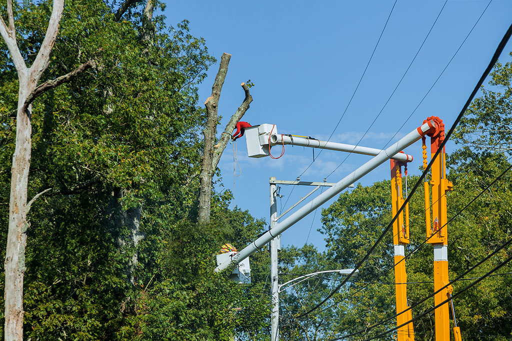 test Twitter Media - To ensure safe and reliable service, UGI maintains a coordinated vegetation management program that promotes proper tree selection and planting, as well as tree trimming in the vicinity of power lines. To learn more, call 800-276-2722. https://t.co/0IlnF7Zwyt