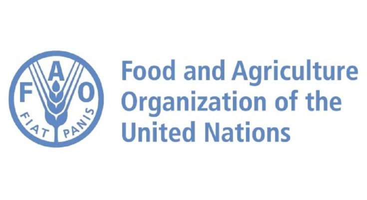 FAO Council approves new measures to reform the UN agency  #Click 2 Read: https://t.co/0T9VIDiMua  #FAO #COVID__19 #Food #Agriculture #SDG #SustainableDevelopment #FoodSecurity #Nutrition https://t.co/Bsc5a9C2l7