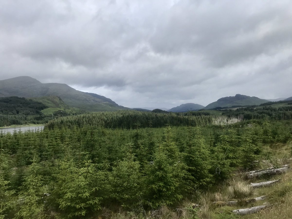 Today's long run was 29km from Fersit to Loch Lagan beach, part of the East Highland Way but I detoured to take me along Lochan na h-earba. It's a lovely route through forests and beside lochs, perfect  #ukrunchat #FridayFun <br>http://pic.twitter.com/jopdFHp7Tx