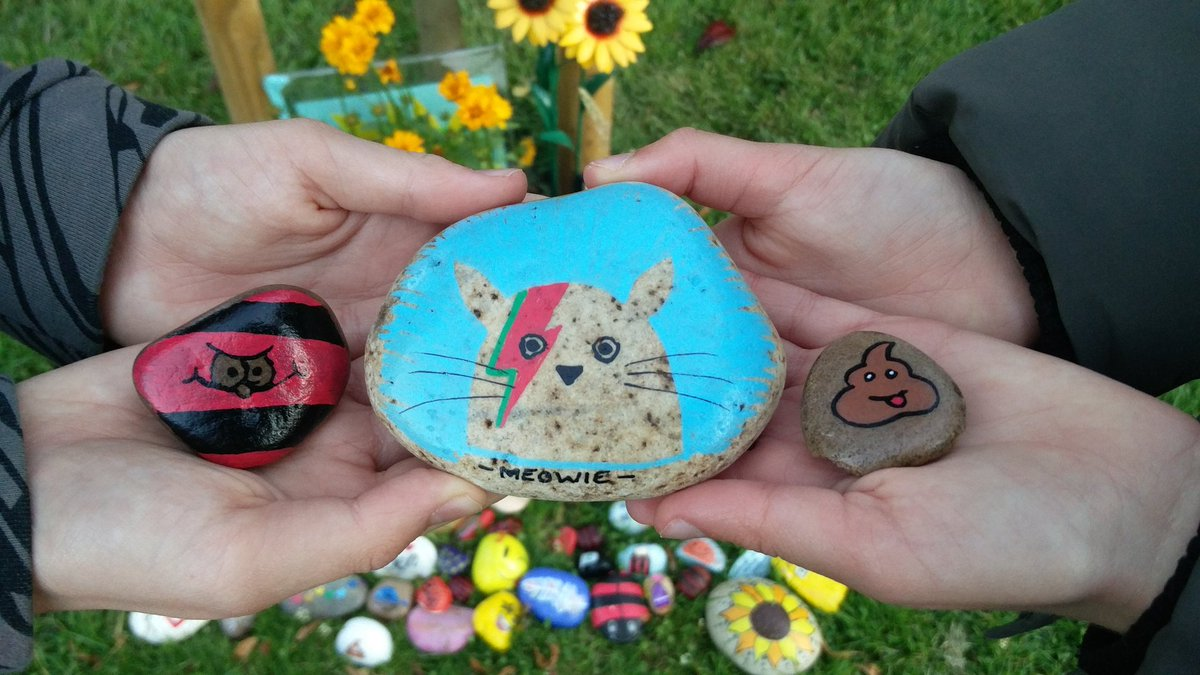 Rock drop! Meowie by @sc00termacc, menace and poo by Ben's brothers 💛🌻💛 #ChildhoodCancer
