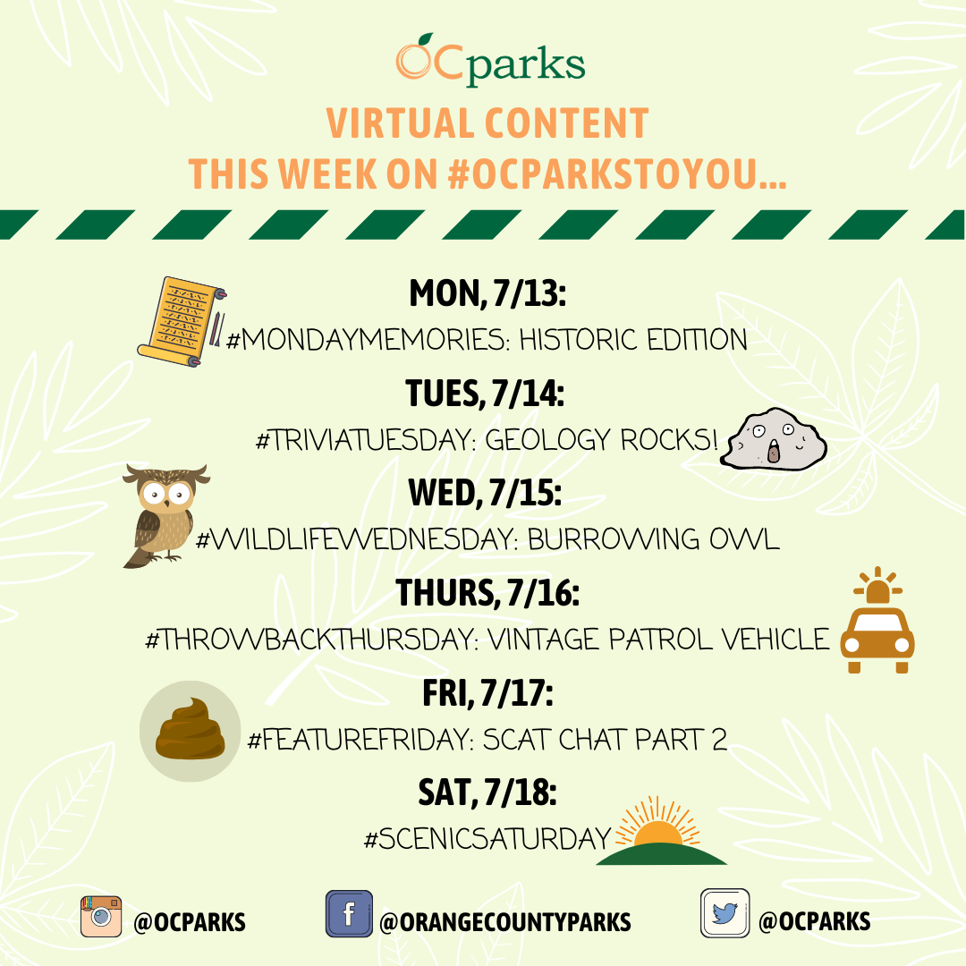 Mark your calendars for some parks-related fun! 🗓  Check out what we have on our social media channels this week:  📜#MondayMemories 🔍#TriviaTuesday 🦉#WildlifeWednesday 🕰#ThrowbackThursday 🎬#FeatureFriday  🌳#ScenicSaturday https://t.co/B3ll1MuTik