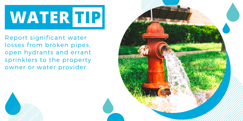 #Water #Tip: Report significant water losses from broken pipes, open hydrants and errant sprinklers to the property owner or water provider.  https://t.co/Cp1vcHIBa7 https://t.co/CfKlsxel8W
