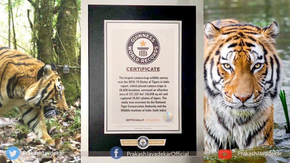 Under the leadership of PM @narendramodi, India fulfilled its resolve to double tiger numbers 4 years before the target through #SankalpSeSiddhi. @GWR @PMOIndia