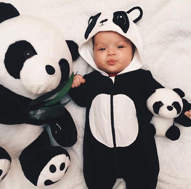 Cute panda  pic.twitter.com/sQqPVduWmw RT HEALTHYBABlES #baby #cute #photooftheday