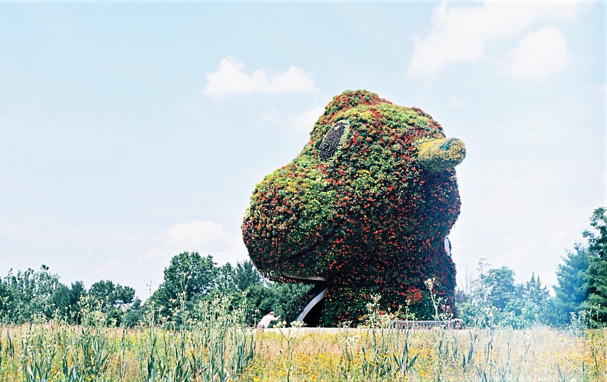 """The mesmerizing Jeff Koons """"Split-Rocker"""" at @GlenstoneMuseum reminds me of something you'd see in an episode of Lost or in the 70's film Logan's Run. It's 37 feet tall and filled with blossoms. Very cool. @ABC7News https://t.co/tBcQhiczDo"""